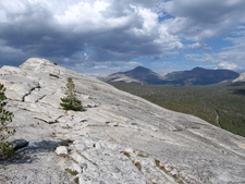 The View Looking East From Lembert Dome