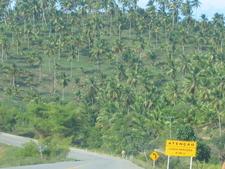 Green Line Highway