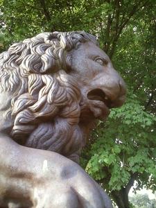 Lion In Fairmount Park