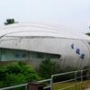 Lions E C C Shell House
