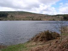 Llwyn On Reservoir