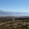 Los Cardones National Park