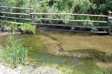 Crestone Creek