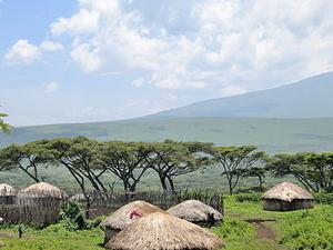 Classic African Safari