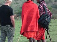 Maasaiboma Copy
