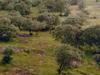 Madhav National Park View