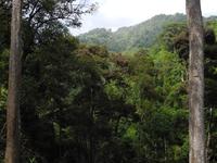 Mae Tho Parque Nacional