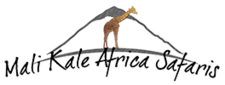 Mali Kale Africa Safaris
