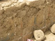 Malkata Wall Painting Remains