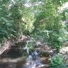 Mamaroneck River