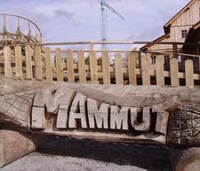 Mammut Tripsdrill Wood
