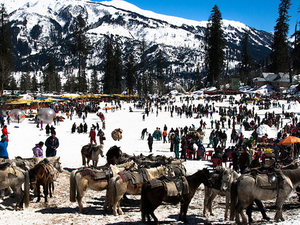 5 Nights 6 Days Shimla - Manali Honeymoon Tour
