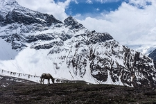 Manaslu Circuit Trek Views - Himalayas In Nepal