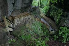 Mangapohue Natural Bridge, Waitomo