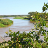 Maputo River