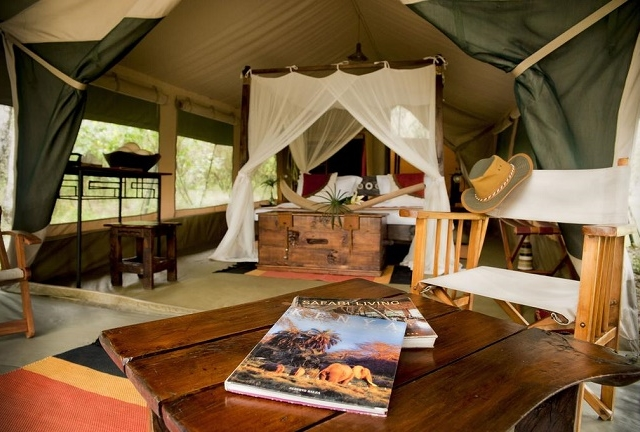 3 Day Masai Mara Bush Camp Road Package Photos