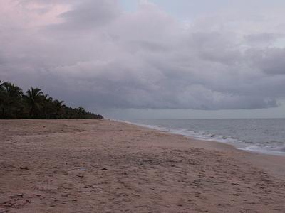 Marari Beach Shoreline