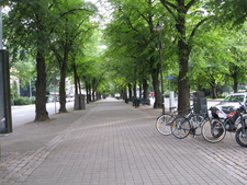 Mariankatu Street