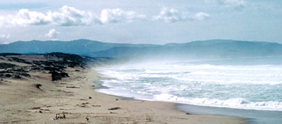 Marina Dunes State Beach