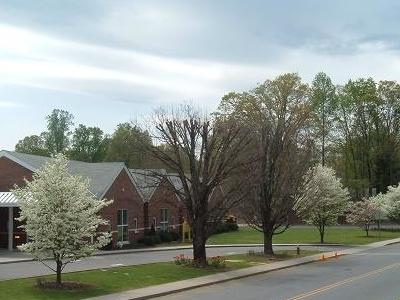 Marion  Elementary