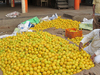 Market Yard, Pune