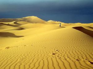 Sahara Camel Trekking - Morocco Active Adventures
