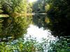 Marshyhope Creek Delaware
