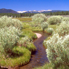 Part Of The Martis Creek Basin