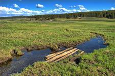 Mary Mountain Trail - Yellowstone - USA