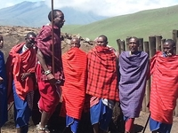 Budget Ngorongoro And Tarangire Camping Safari