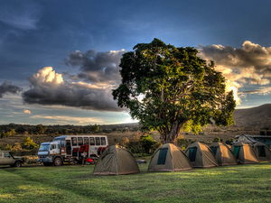 3 Days Masai Mara Joining Camping Safari