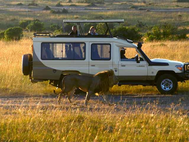 3 Days Masai Mara Exclusive Safari Photos