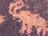Mastodon detrás de las rocas