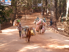 Matheran Walkways - Maharashtra - India