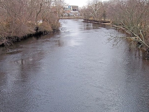 Maurice River