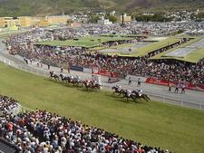 Mauritius Horseracing