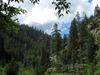Maxwell Trail