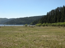 Meadow In Pudacuo National Park