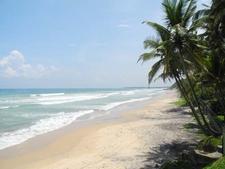 View Of Medawatta Beach