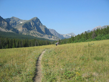 Medicine Grizzly Trail At Glacier - Montana - USA