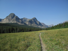Medicine Grizzly Trail - Glacier - Montana - USA