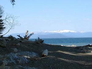 Memorial Beach Primitive Campsites