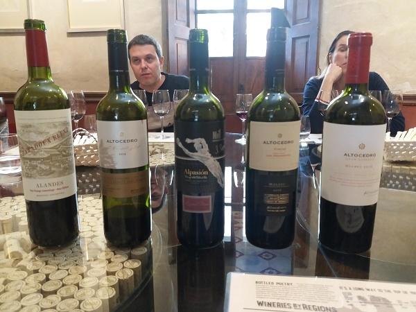 Deluxe Mendoza Wine Tour Photos