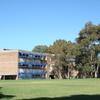 Marrickville Highs Top Field