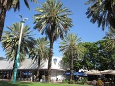 Miami Beach Lincoln Mall Palms - FL