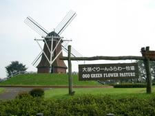 Michinoeki Green Flower Stock Farm Ogo