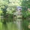 Mill Pond In Silvermine River