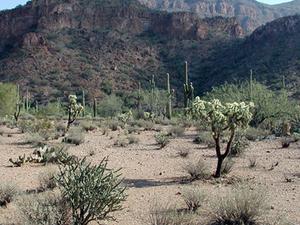 Montañas minerales, Arizona