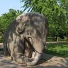 Ming Xiaoling Animal Elephant