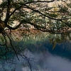 Mirror Lake In Fiordland NZ